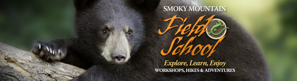 Smoky Mountain Field School